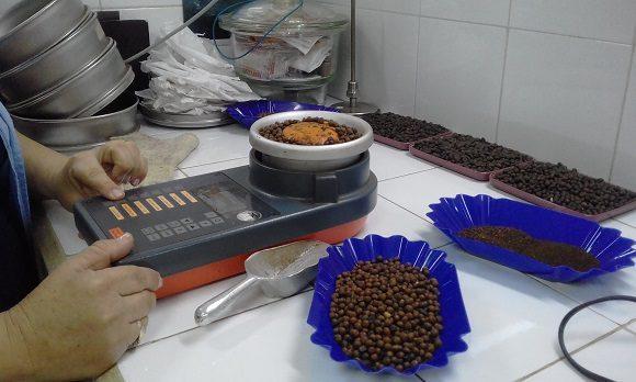Bajo una estricta supervisión de calidad Cuba Café produce 4 marcas para el mercado interno en divisasTurquino Serrano El Arriero y Regil 580x348