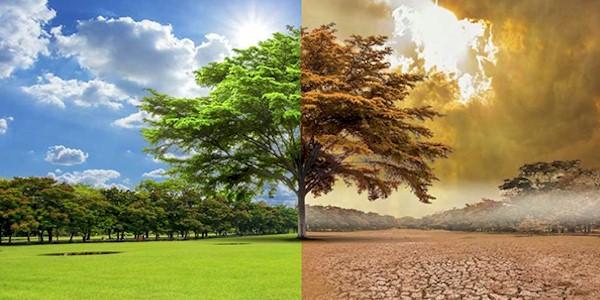 cambio climatico9