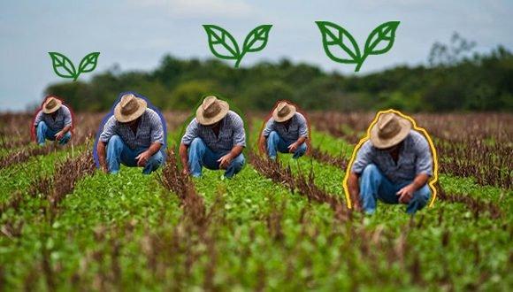 cuba agricultura 580x330