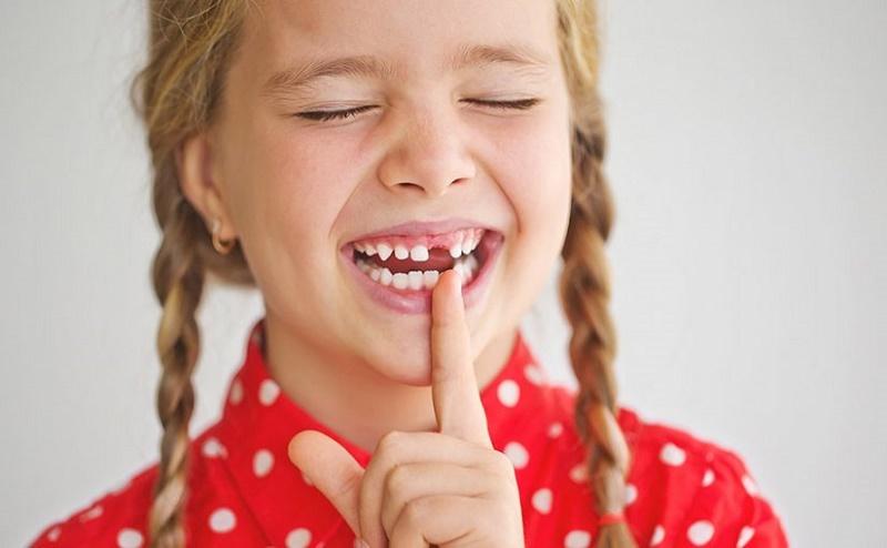 dientes leche importancia