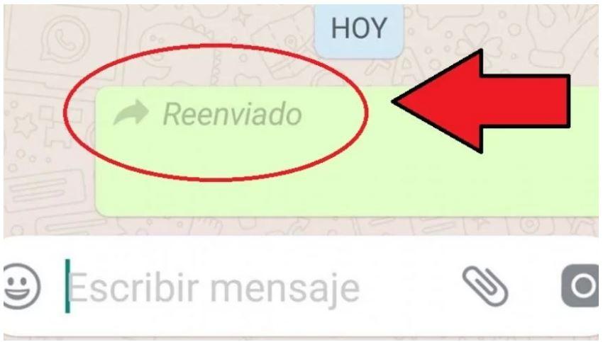 mensaje reenviado de whatsapp 2