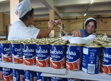Regresaran productos de tomate al mercado de Cuba