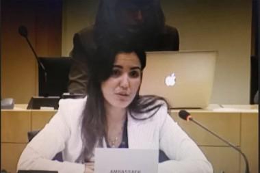 Diplomática cubana desenmascara en Parlamento Europeo a agentes que sirven a EE.UU.