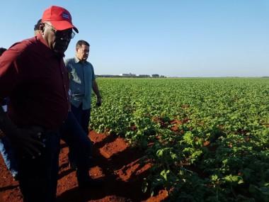 Recorre vicepresidente cubano áreas productivas en Artemisa