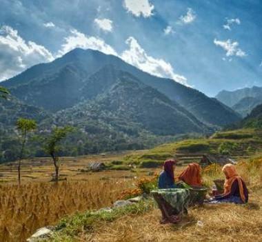 La campaña para 2019 se centra en los jóvenes que viven en la montaña (FAO/Shanthungo Ezung)