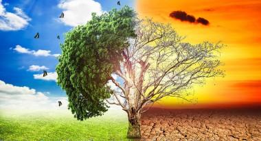 Imagen alegórica al medio ambiente